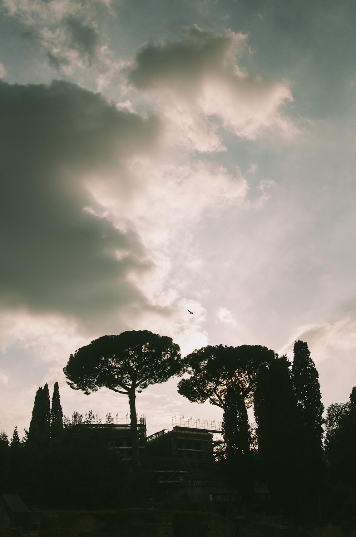 Rome-56